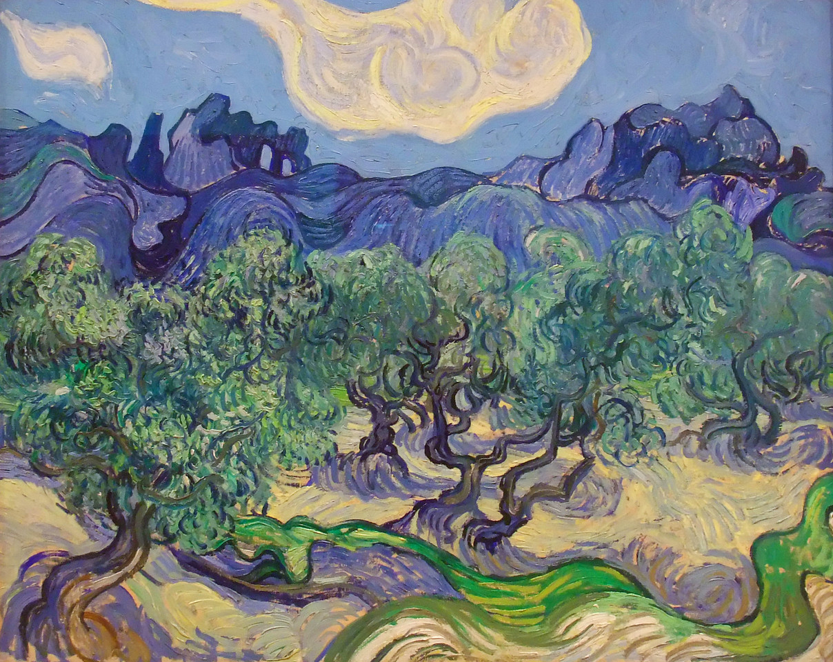 """The Olive Trees<br /> Vincent van Gogh (Dutch, 1853-1890)<br /> 1889. Oil on canvas, 28 5/8 x 36""""<br /> Museum of Modern Art"""
