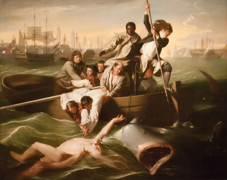 John Copely<br /> Watson and the Shark<br /> 1778