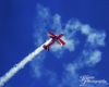 Apple Valley Air Show-Tumbling Bear-3216-FB