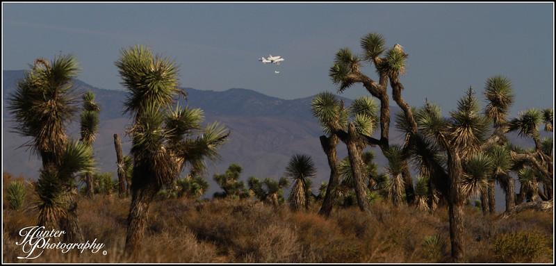 Space Shuttle Endeavour-6002 HPcr