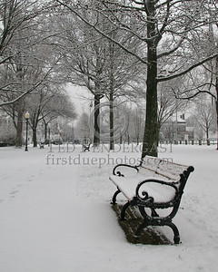Town Common - Wakefield,Mass. - Dec.30,2006