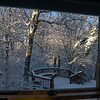 View out my bedroom window toward Pierce Park across the ravine.