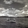 Sockeye fishing on Lake Washington, Seattle.