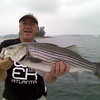 Striper, Lake Lanier, September 2007.