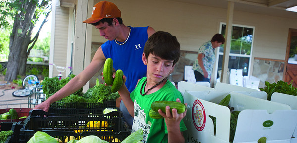 copyright 2012 Sarah A. Miller/Tyler Morning Telegraph  Luke McKinney, 10, gathers cucumbers to box at his family's Laneville farm. The McKinneys run a community supported farm that features organic fruit and vegetable crops as well as flowers that they and their five children harvest. They also help support other local farmers by using their produce in the boxes they sell.