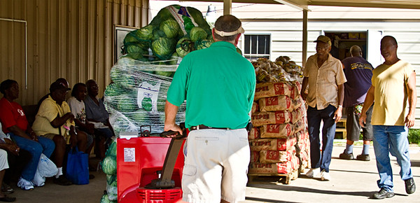 """Don """"Big"""" Morris maneuvers a crate piled high with lettuce under a pavilion at Texarkana's Friendship Center Church. More than 200 people were already waiting for the10,000 pounds of produce hours before it arrived."""