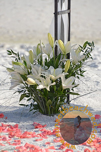 White Lily fresh floral arrangement