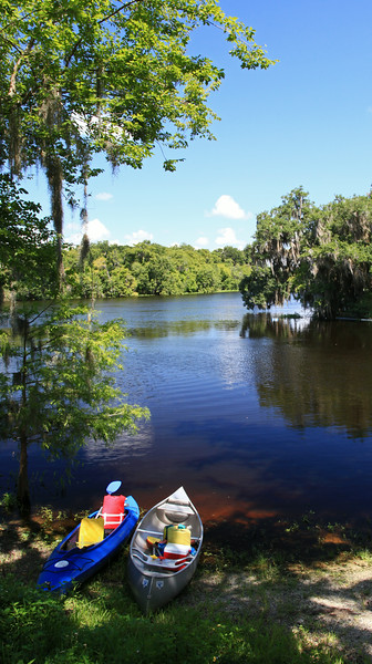 Confluence of Blue Spring run and St. Johns River