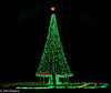 Stephen Foster State Park Holiday Lights