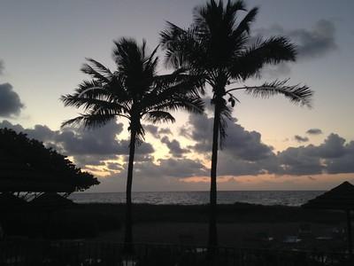 Florida Trip 2015