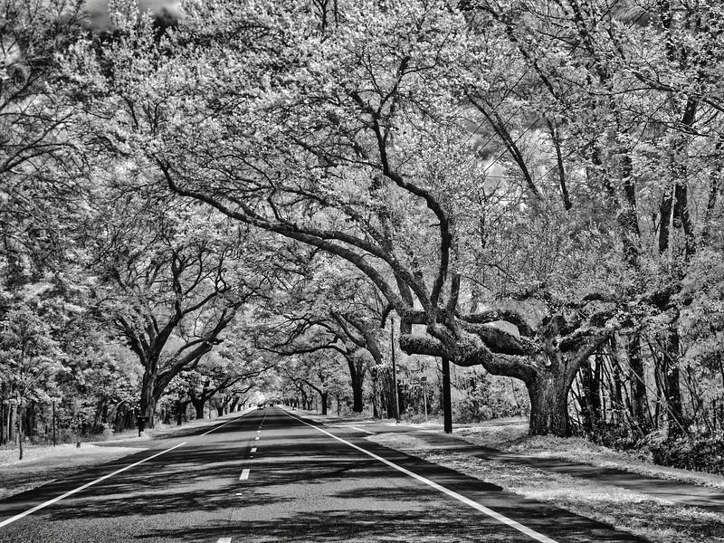 James C. Penney Memorial Boulevard