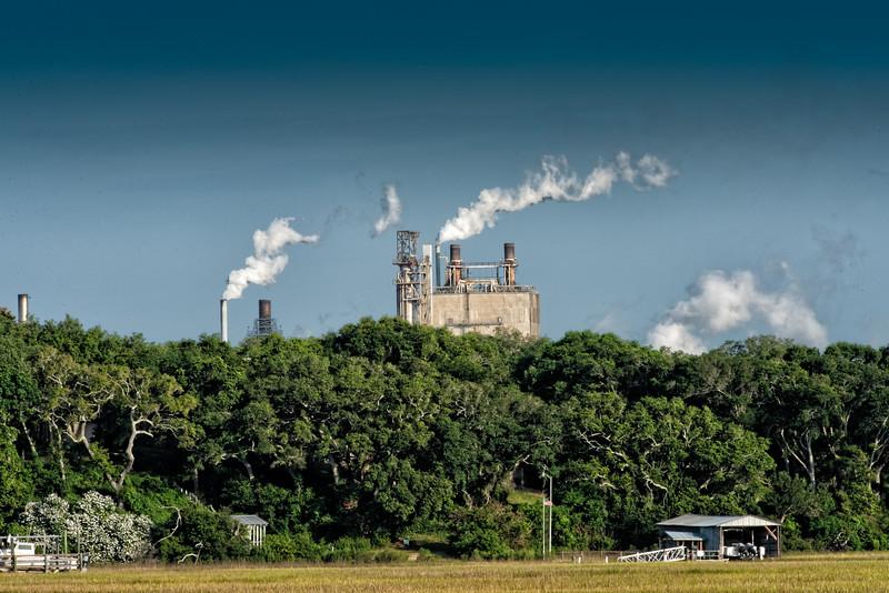 Amelia Island Paper Mill