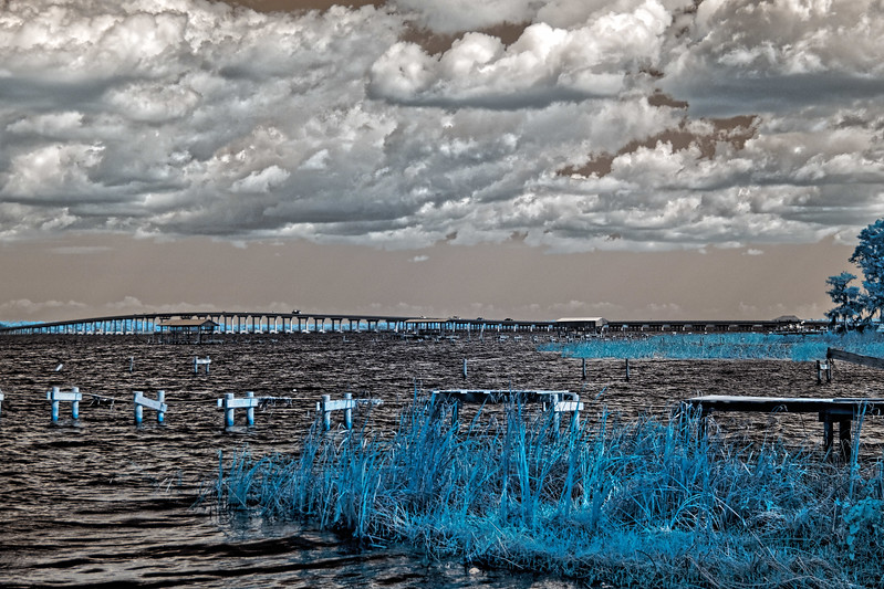 Shands Bridge in Infrared