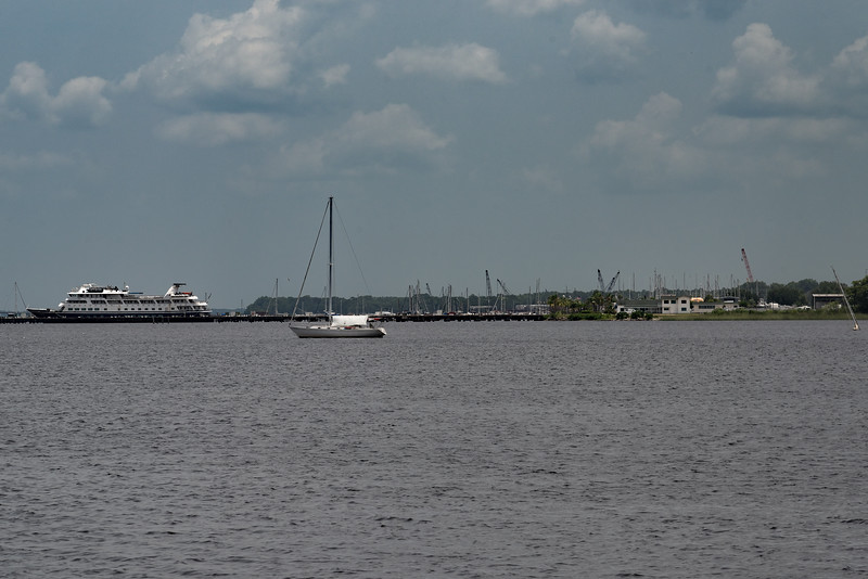 St. Johns River from Springs Park