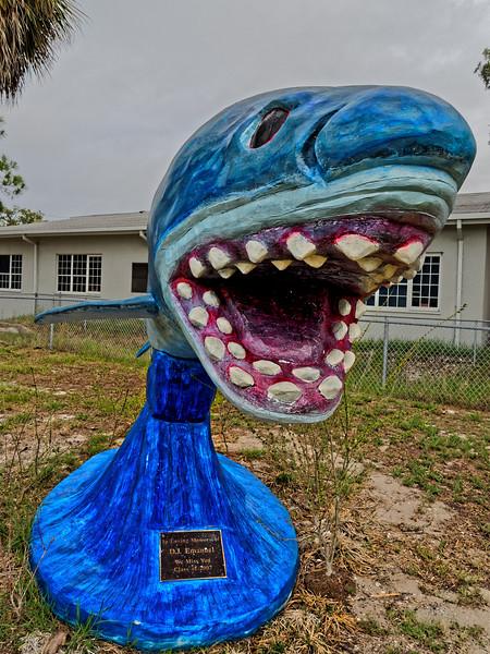 "Cedar Key  School ""Shark Pride"""