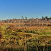 Putnam County's Sweetwater Creek