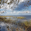 Florida's St. Johns River