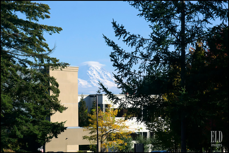 Mount Rainier from Federal Way