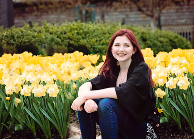 Yellow Tulip Smile (1 of 1)-2