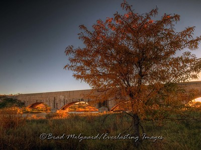 """Red Morning,"" taken in the early morning when the sun first breaks the horizon, creates some of the best light and colors. The sunlight streaming through the arches of the flume as well as the tree top leaves being illuminated makes this one of my favorite images. Brad"