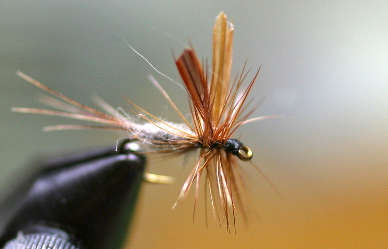 Adams dry fly adaptation| No. 14 | Tied 4/13