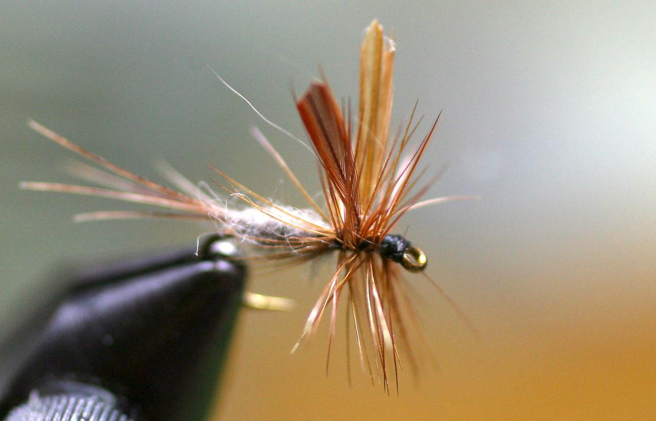 Adams dry fly adaptation| No. 14 | Tied 4/13