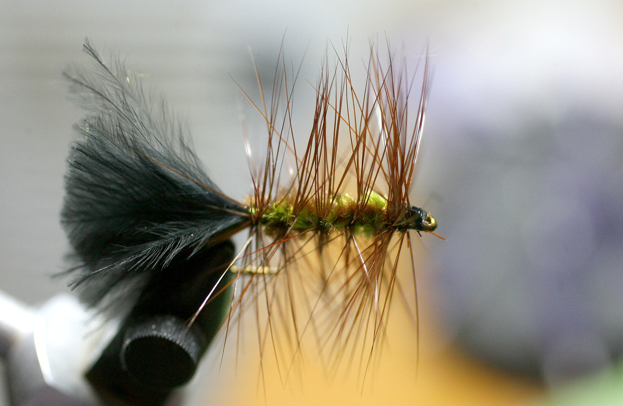 Woolly Bugger | Tied 4.13