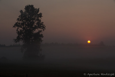 Smoky Sunrise