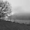 Foggy River B&W