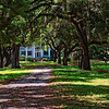 McLeod Plantation House