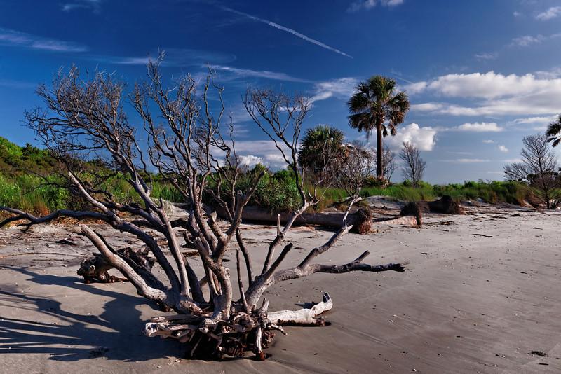Morris Island Boneyard