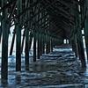 Under the Folly Beach Pier