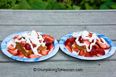 Strawberry Shortcake, Dane County, Wisconsin