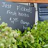 Farmers Market Herbs