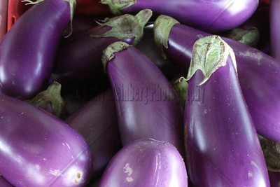 Eggplants @ the Farmers Market