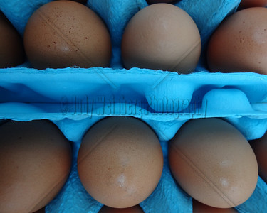 Brown Eggs. Blue Carton.