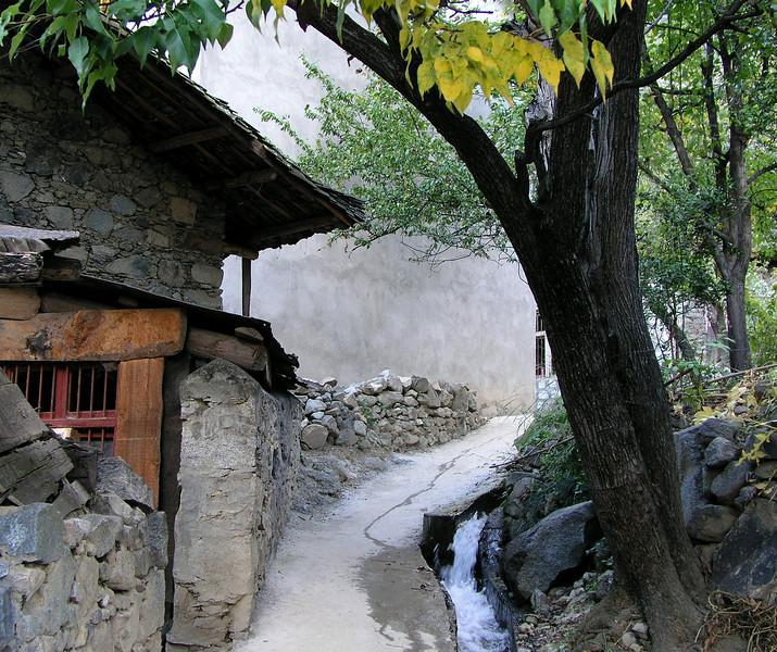 Village Path, Sichuan Province. 2005