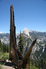 Yosemite - a different vantage point