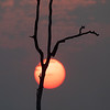Solnedgang i Kambodsja / Sunset in Cambodia<br /> Tmatboey; Kambodja 19.1.2020<br /> Canon  5D Mark IV + EF 50mm f/1.4 USM