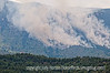 forest fire; best viewed in the largest sizes