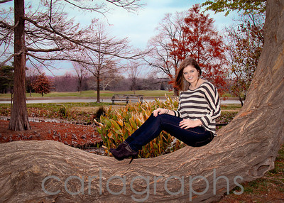 jane on the big tree-