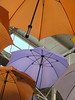 A bevy of colorful umbrellas at the Indiana Flower and Patio Show.