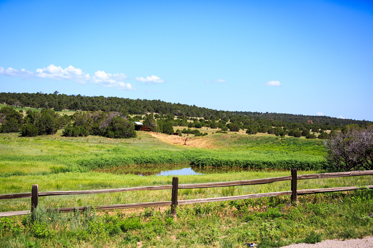 Founders Ranch-8238