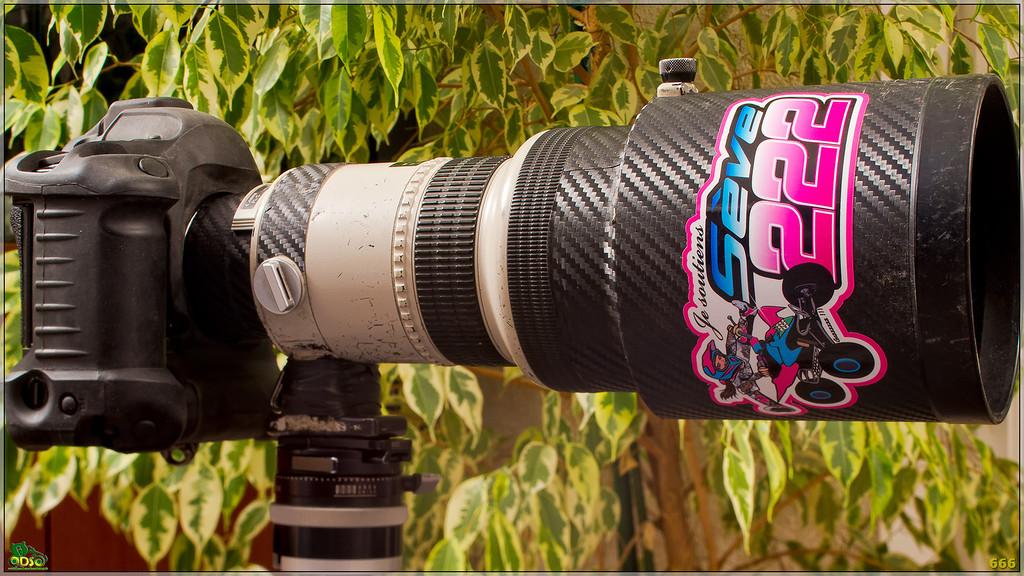 IMAGE: http://photos.corbi.eu/Other/Fourre-tout/i-6j8sVSL/1/XL/DSC3412-copie-XL.jpg