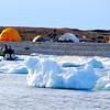 our camp on Ugli Island