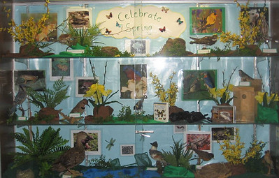 Foyer Cabinet Displays