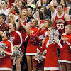 The Frankton student section cheers after the Eagles tied the game.
