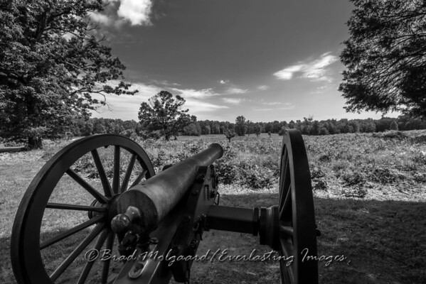 Canon over looking the battlefield of Spotsylvania