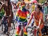 Rainbow Cyclist In Solstice Parade