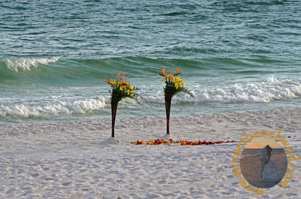 Tropical Arrangements, Red and Yellow Rose Petals